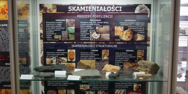 foty-mineraly-skamienialosci01