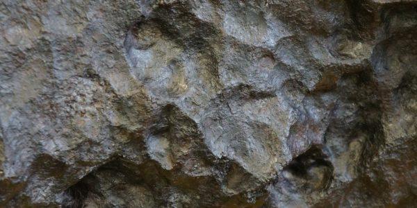 meteoryt15